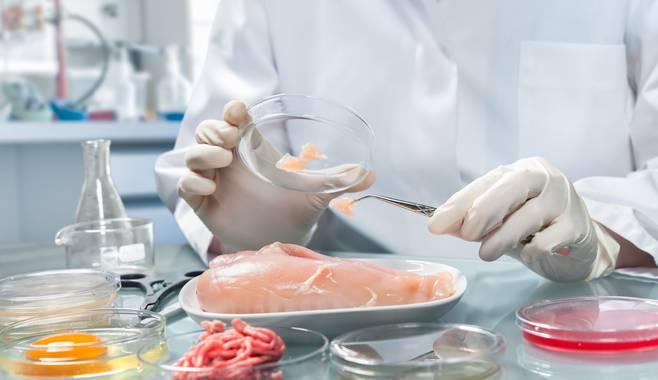 Сертификация пищевой продукции: важные нюансы