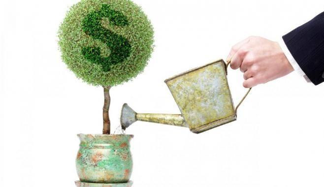 Куда вложить сбережения и не потерять?