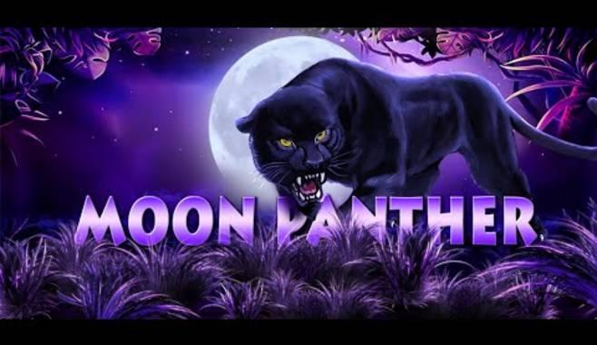 Стал доступен новый игровой автомат Panther Moon