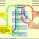 План-фактный или план-факторный анализ