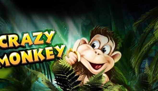 Увлекательные приключения обезьянки в игровом автомате Crazy Monkey