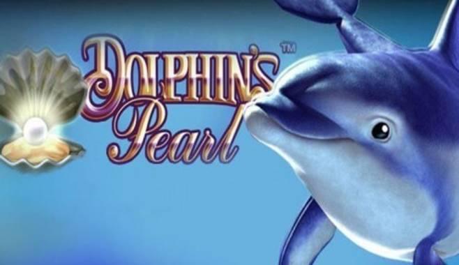 Отличительные особенности нового игрового автомата Dolphins Pearl
