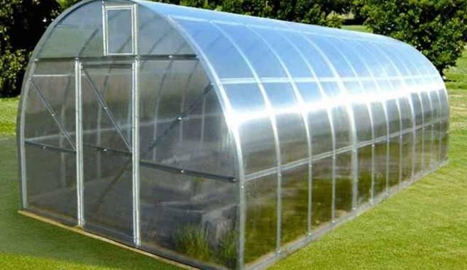 Создание фермерских теплиц – отличный способ выйти из кризиса